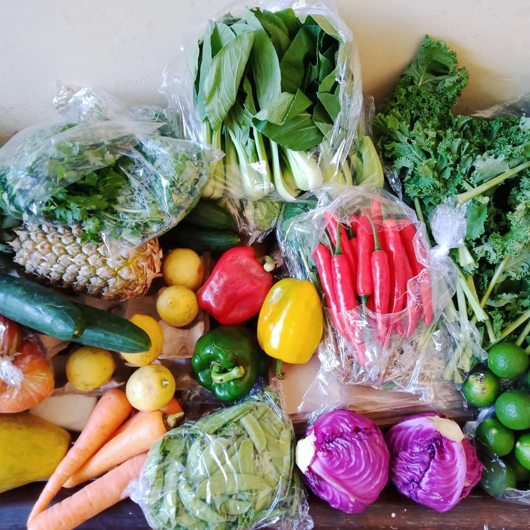 online grocery in Bali