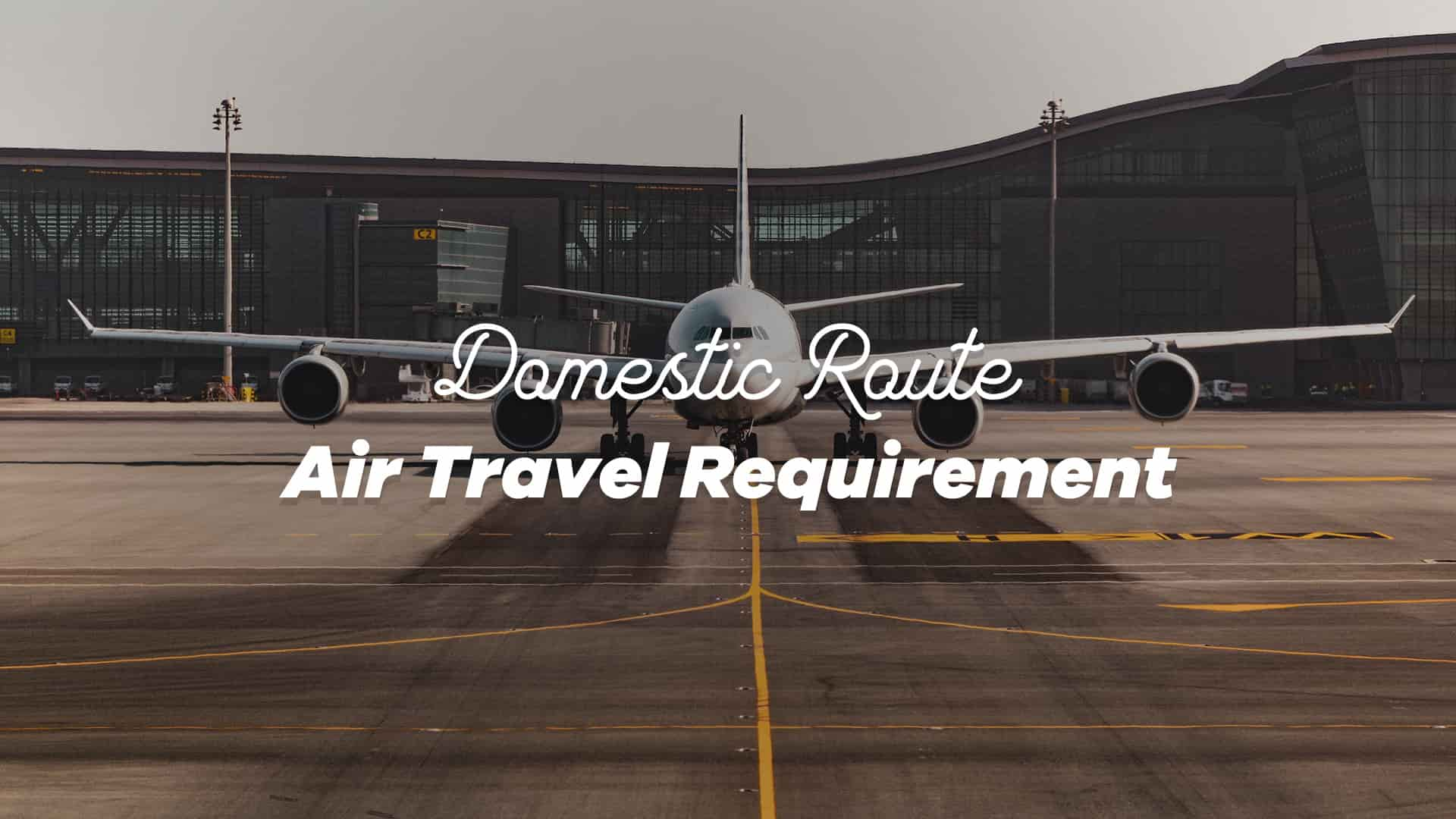 Domestic Air Travel Requirements