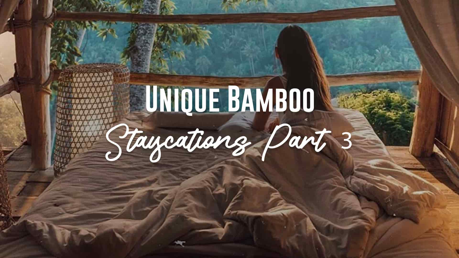 bamboo staycation 3