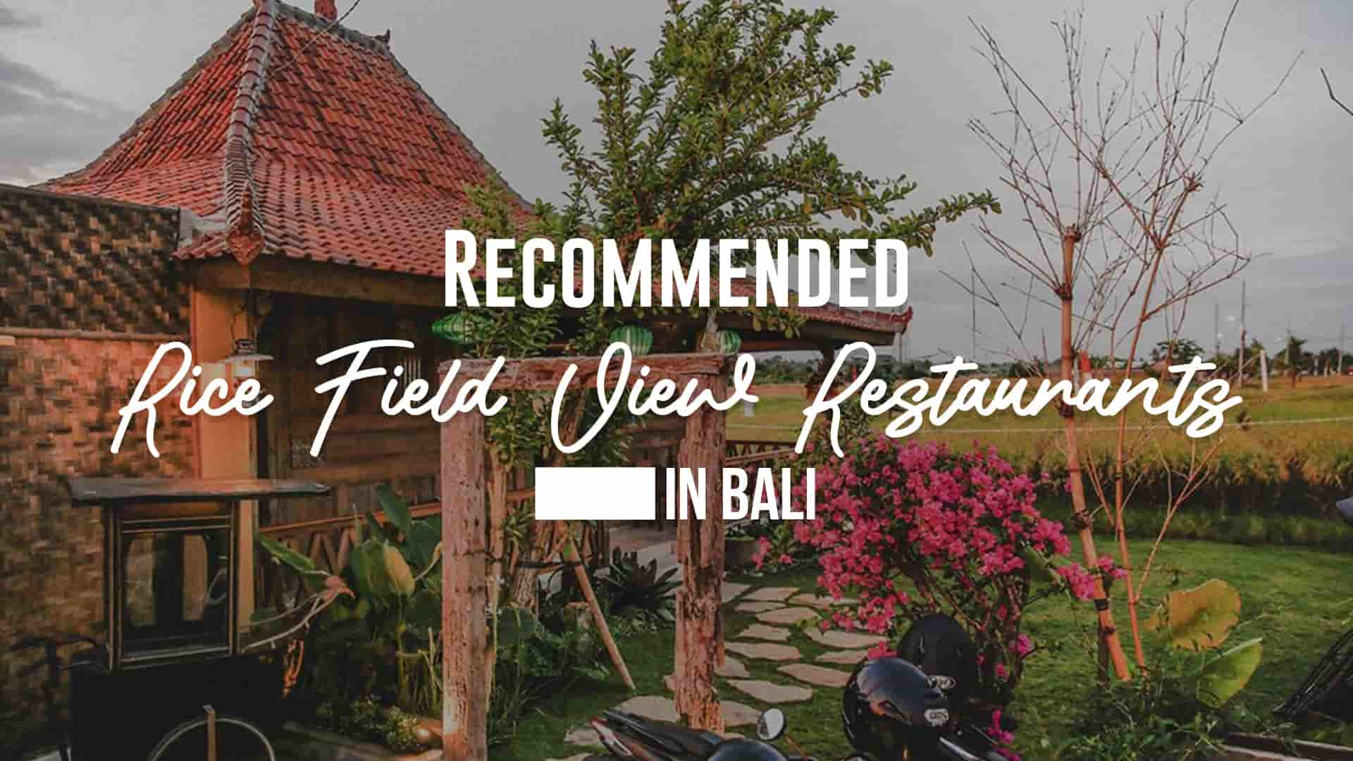 Recommended Rice Field View Restaurants in Bali