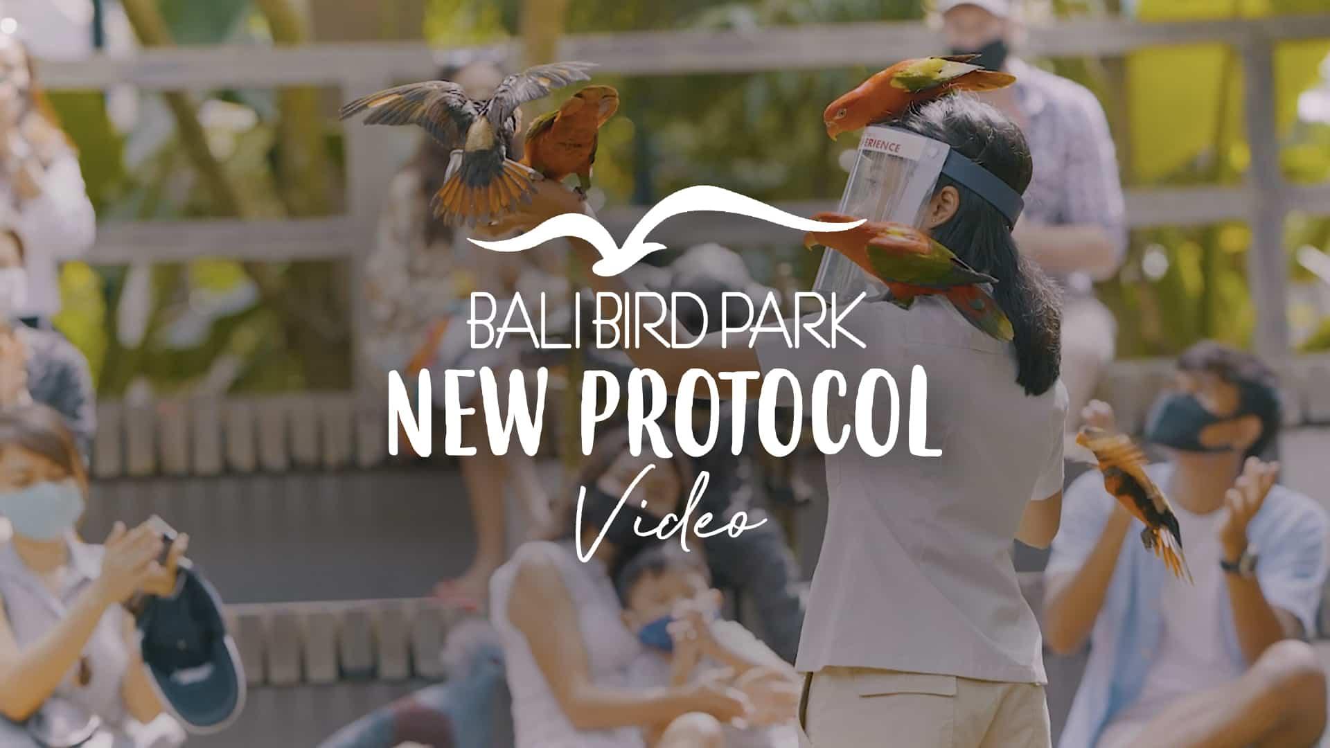 bali bird park new experience